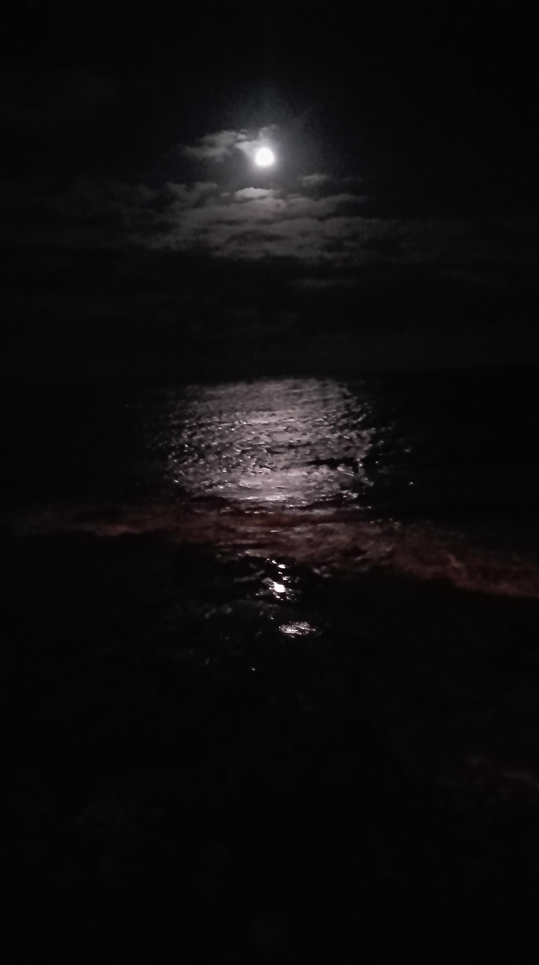 La Foto Della Buona Notte Da Gran Canaria Il Quotidiano Delle